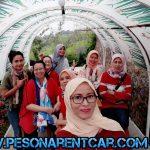 Cara Mudah Memilih Jasa Sewa Mobil Supir Cirebon yang Terbaik